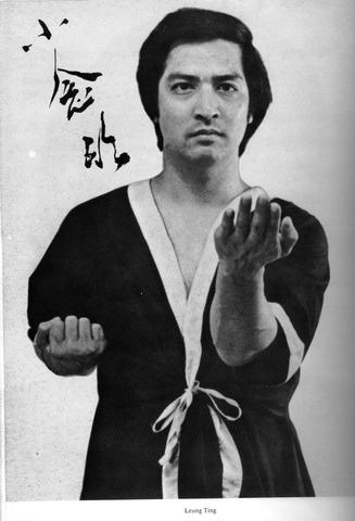 Wing Chun Formen - Leung Ting